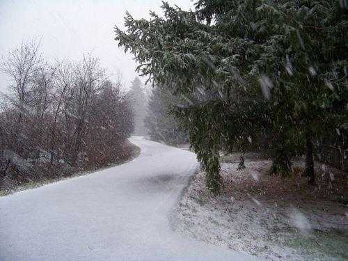 Dec snow 006